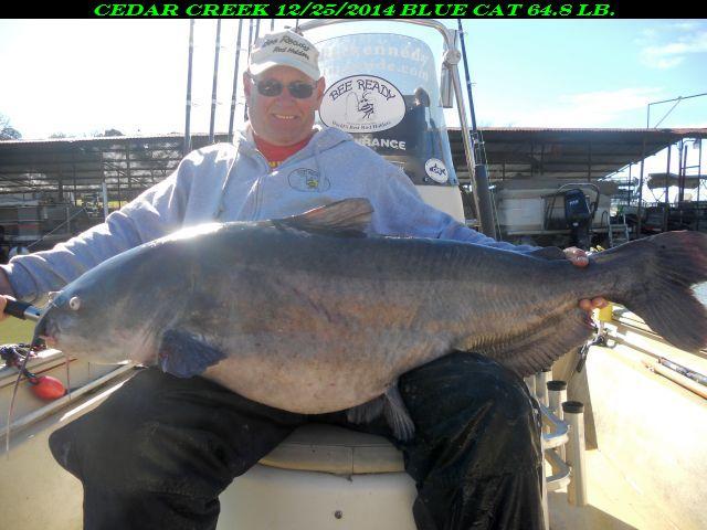 Cedar creek lake texas for Lake waco fishing report